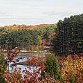 colors of fall in New England by Kim Galluzzo Wozniak