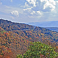 Colors Of Nature by Susan Leggett