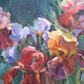 Colors Of The Rainbow by Elizabeth Taft