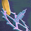 Coloured Sem Of Endoscopy Forceps Holding A Cog by Volker Steger