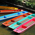 Colourful Punts by Tony Murtagh