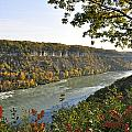 Colours Of The Fall In The Niagara Glen by Rosemary Legge