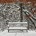 Come Sit Awhile by Inspired Nature Photography Fine Art Photography
