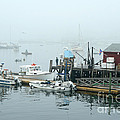 Commercial Lobster Dock by Ted Kinsman