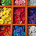Compartments Full Of Buttons by Garry Gay