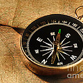compass by HD Connelly