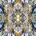 Complexity Of Creation by Danny Lally
