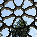 Concrete Lattice Vancouver Chinatown by John  Mitchell