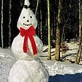 Conehead Snowman by Kristin Elmquist