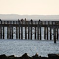 Coney Island Pier by Rob Hans