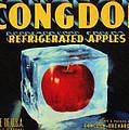 Congdon Refrigerated Apples by Kristin Elmquist