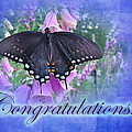Congratulations Greeting Card - Spicebush Swallowtail Butterfly by Mother Nature