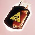 Contaminated Blood by Cristina Pedrazzini