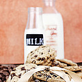 Cookies And Cream by Stephanie Frey