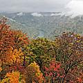 Cooper's Rock West Virginia by Kathleen K Parker