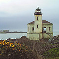 Coquile Lighthouse by Wendy McKennon