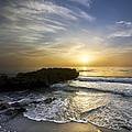 Coral Shoreline by Debra and Dave Vanderlaan