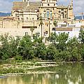 Cordoba Cathedral And Guadalquivir River by Artur Bogacki