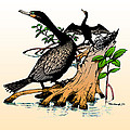 Cormorants On Mangrove Stumps Filtered by Duane McCullough