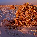 Corn Bales At Sunset, Dugald, Manitoba by Mike Grandmailson