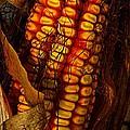 Corn  by Chris Berry