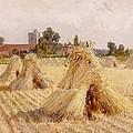 Corn Stooks By Bray Church by Heywood Hardy