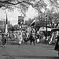 Corner Club 4 Black And White-mardi Gras by Kathleen K Parker