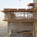 Corner Crane Sunbeams by Kantilal Patel