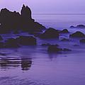 Corona Del Mar 5 by Mark Greenberg