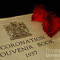 Coronation Book With Roses by Lainie Wrightson