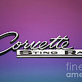 Corvette Sting Ray Emblem by Thomas Woolworth