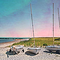 Cosmic Cape Cod by Robin-Lee Vieira