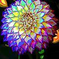 Cosmic Natural Beauty by Ben Upham III