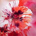 Cosmic Poppies by Ruth Harris