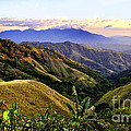 Costa Rica Rolling Hills 1 by Madeline Ellis
