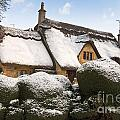 Cotswolds Cottage by Andrew  Michael