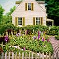 Cottage And Garden by Jill Battaglia