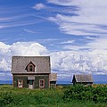 Cottage At Bay Of Chaleur by John Sylvester