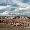 Cottonwood Canyon Badlands by Sandra Bronstein