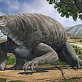 Cotylorhynchus Bransoni, A Prehistoric by Sergey Krasovskiy