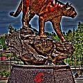 Cougar Pride by David Patterson