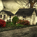 Country Charm by Mary Timman