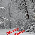 Country Christmas 1 by DeeLon Merritt