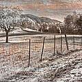 Country Lane by Debra and Dave Vanderlaan