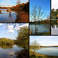 Country Parks Collage by Chris Day