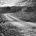 Country Roads Bw by Tami Newcomb