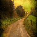 Countryside Road by Svetlana Sewell
