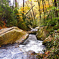 Courthouse River In The Fall 2 by Duane McCullough