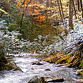 Courthouse River In The Fall by Duane McCullough