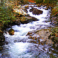 Courthouse River In The Fall Filtered by Duane McCullough